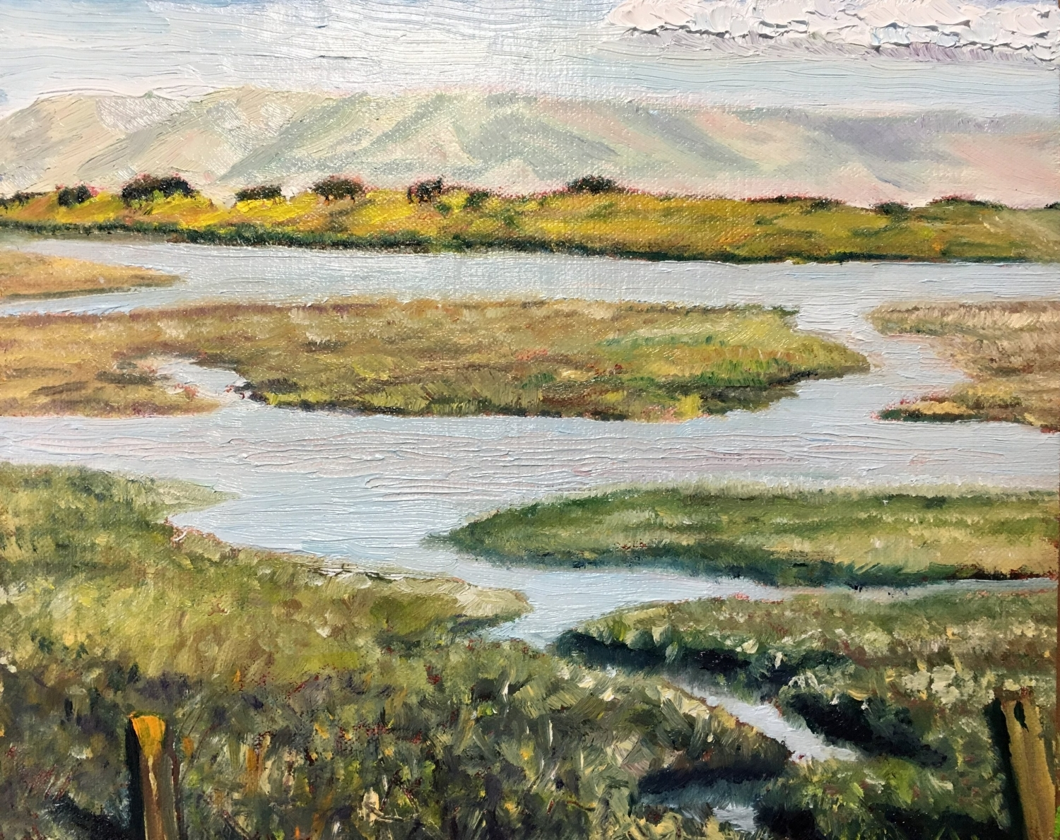Baylands Tidal Marsh on late afternoon on May 18th (8x10)