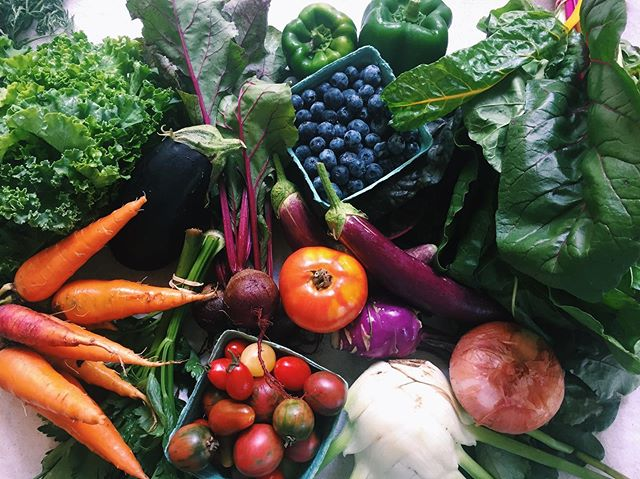 This week's farm box is a pretty one😍 It's filled with produce from our local farms @fatbeetfarm, Fasig Family Farm, Blue Gold Growers and our very own garden! • Sign up to get yours today!