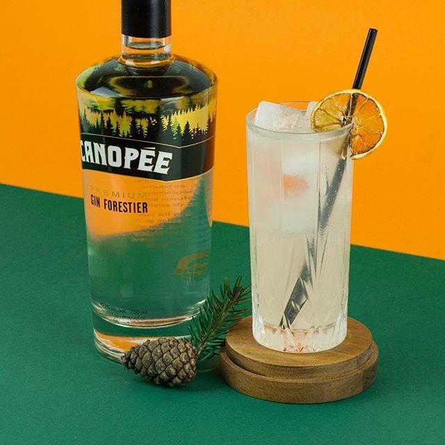 Le 27 février sera le lancement de @caviar227 pour qui nous avons concocté le Forest Fizz, mettant en vedette le gin forestier Canopée de @spiritueuxiberville 🌲 ~ 1.5oz gin forestier Canopée 0.75oz sirop simple 0.75oz jus de citron frais 4 dash de tincture de sapin 3oz d'eau pétillante Garnir d'une tranche de citron déshydratée