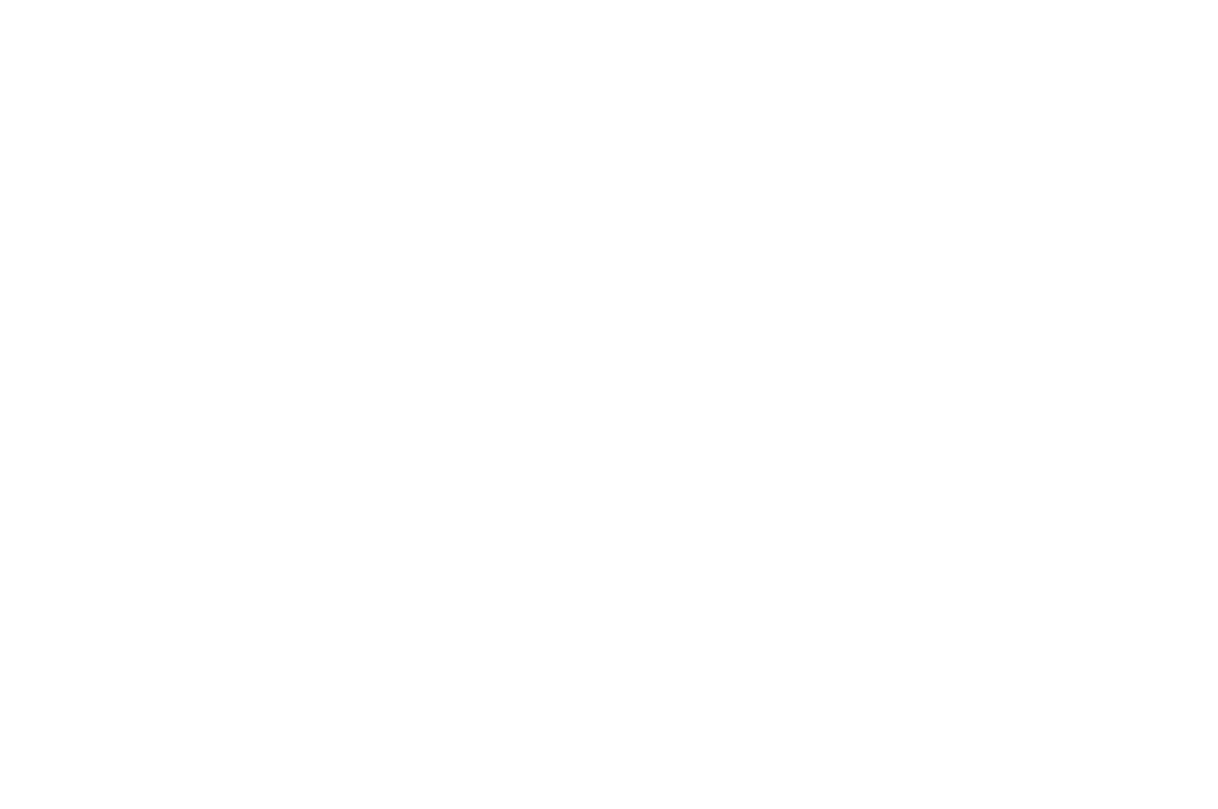 OFFICIAL SELECTION - Burbank International Film Festival - 2018.png
