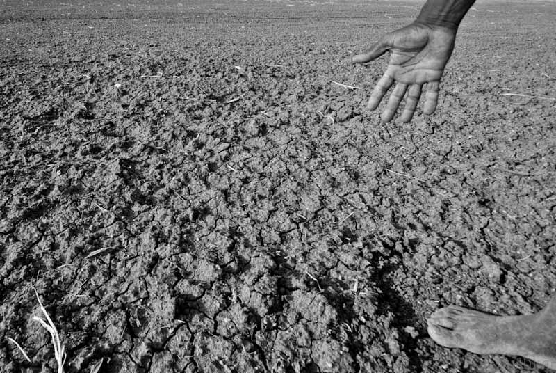 Drought in Karnataka, India, 2012. By Wikimedia Commons user  Pushkarv .