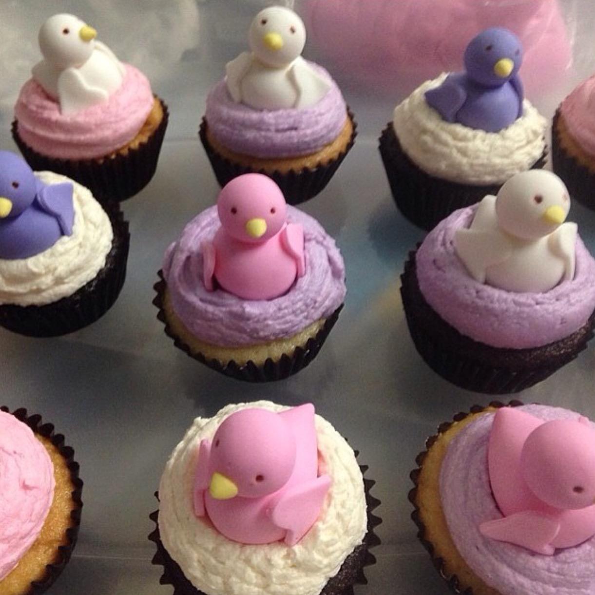 Custom Spring Bird Cupcakes