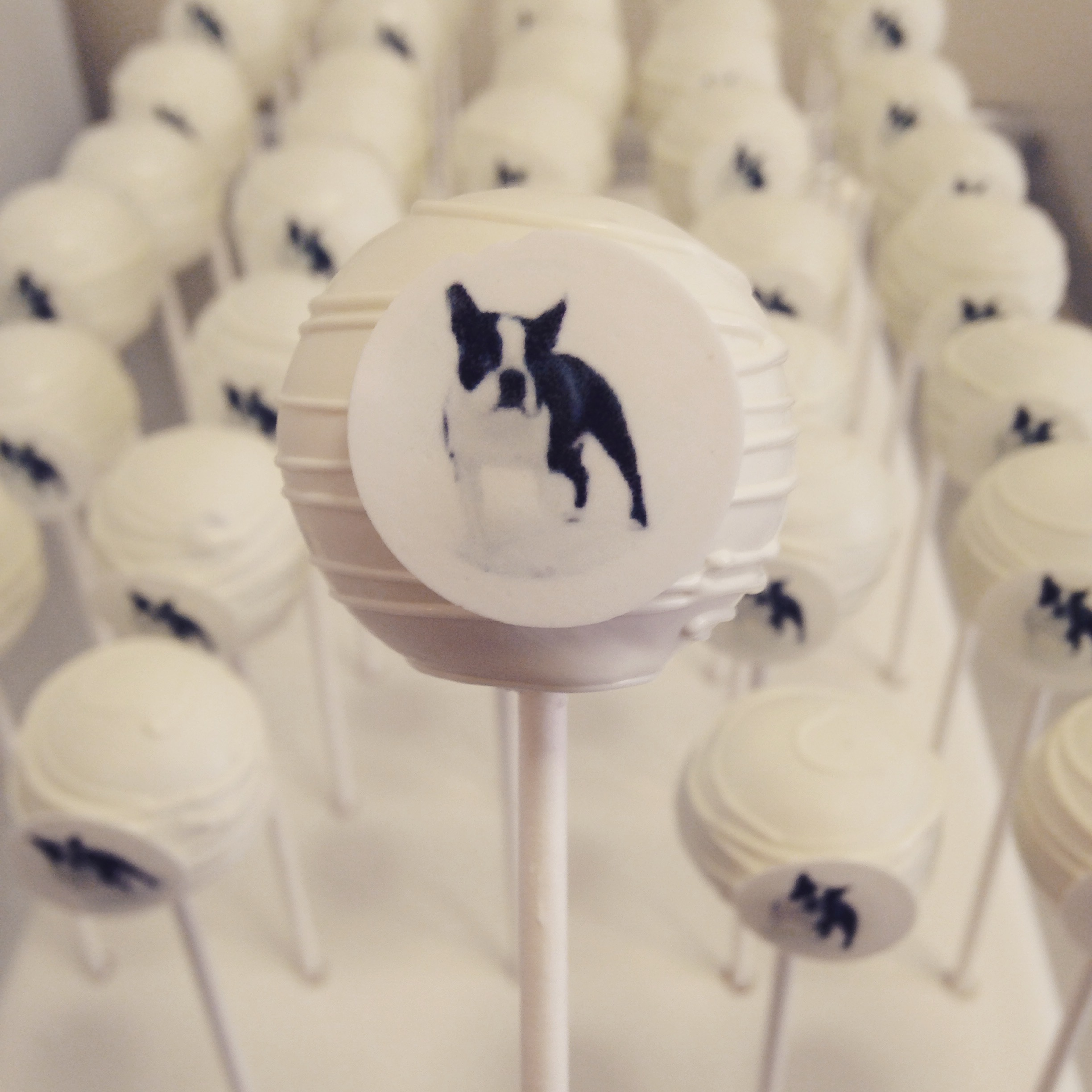 Dog Logo Cake pops