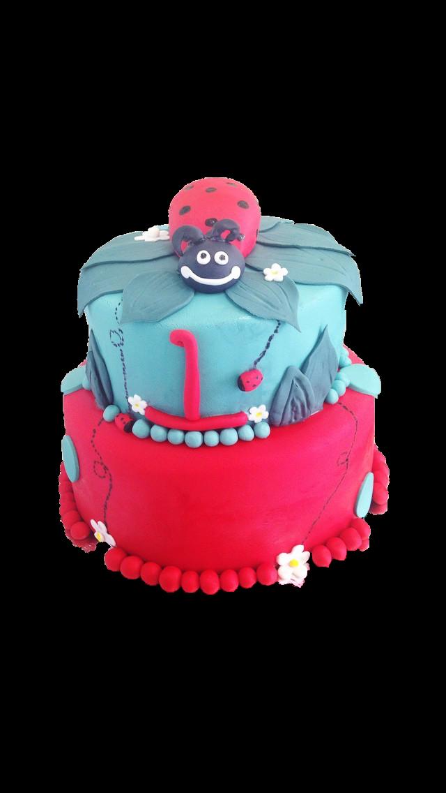 Lady Bug shower cake