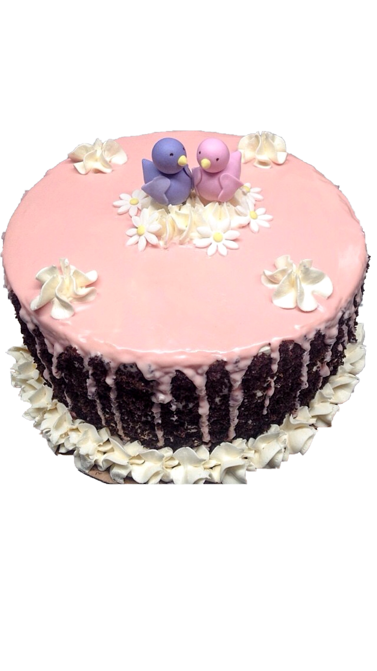 Bird Buttercream cake