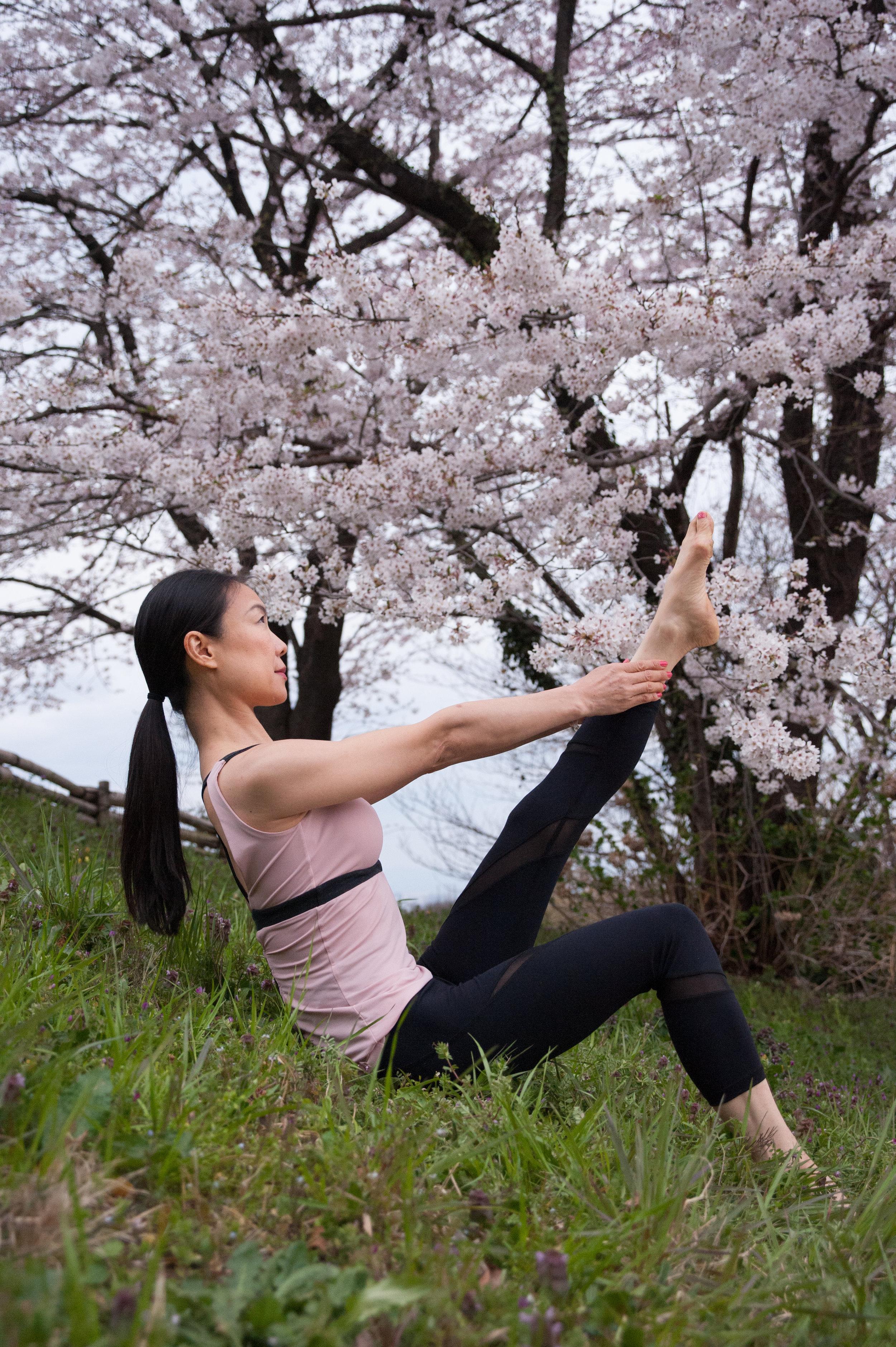 Sakura One leg Up 2535.jpg