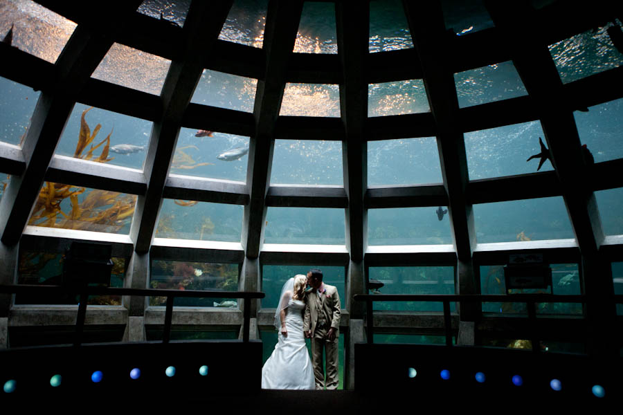 Seattle-Aquarium-Wedding-Photography-KKblog-0001.jpg