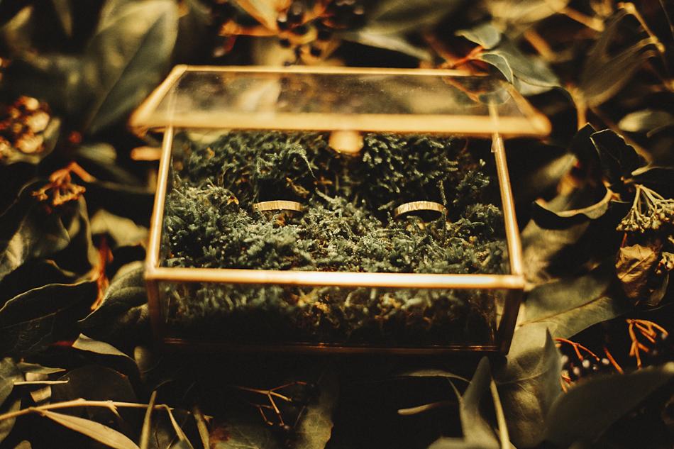 Velvet_Garden_by_Kilindipia-60.JPG