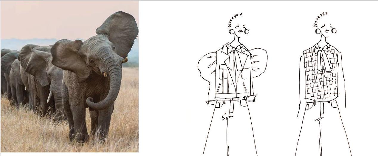 Rough Draft Elephantasia Sketch by Anissa Aida