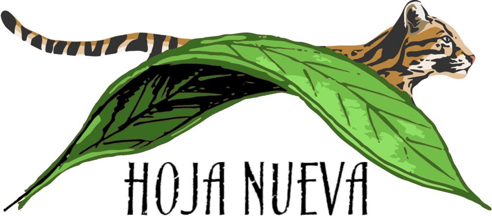 Pictured: Hoja Nueva's official logo