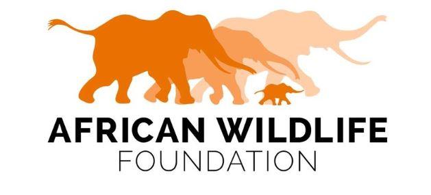 African Wildlife Foundation.JPG