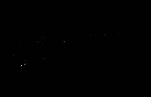 Elle L Logo.png