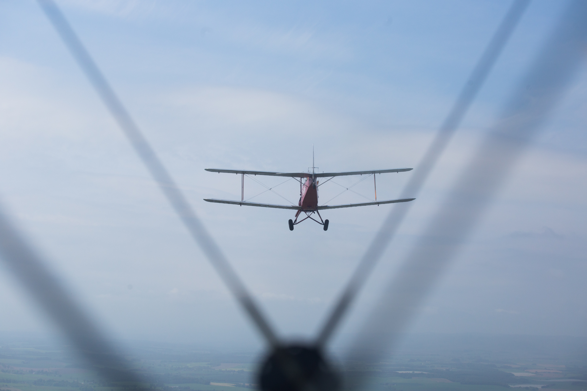 Tiger Moth-6.jpg