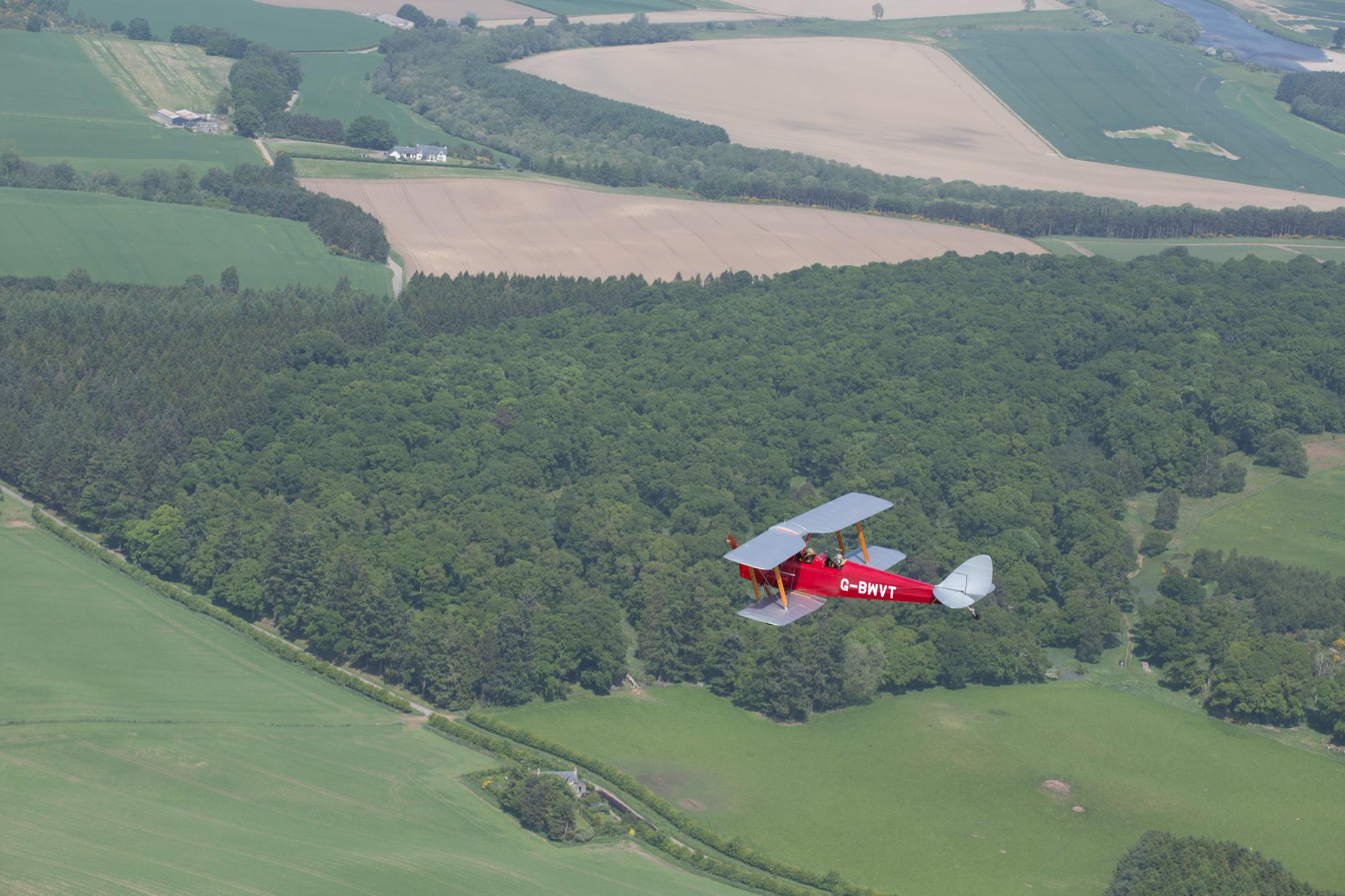 Tiger Moth-7.jpg