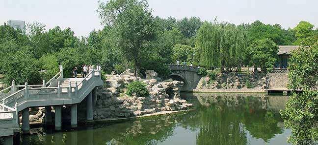 Xing Qing Park - 兴庆公园
