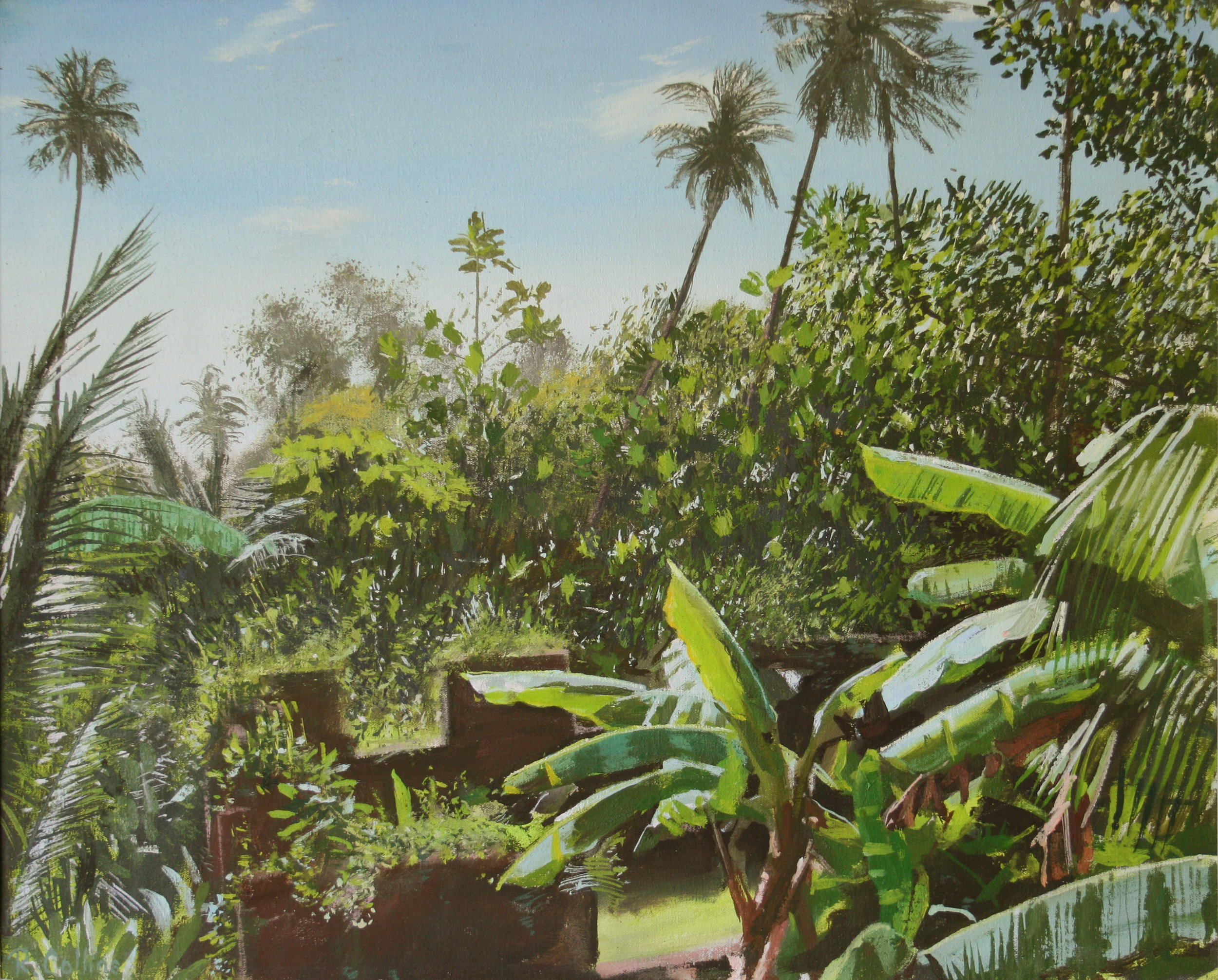 Jungle garden St Lucia:1.jpg