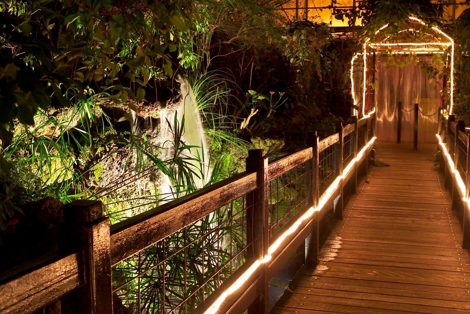 Tropical World.jpg