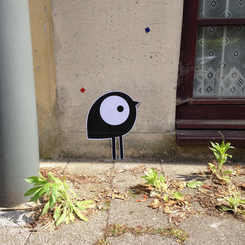 Kath_bird 03.jpg