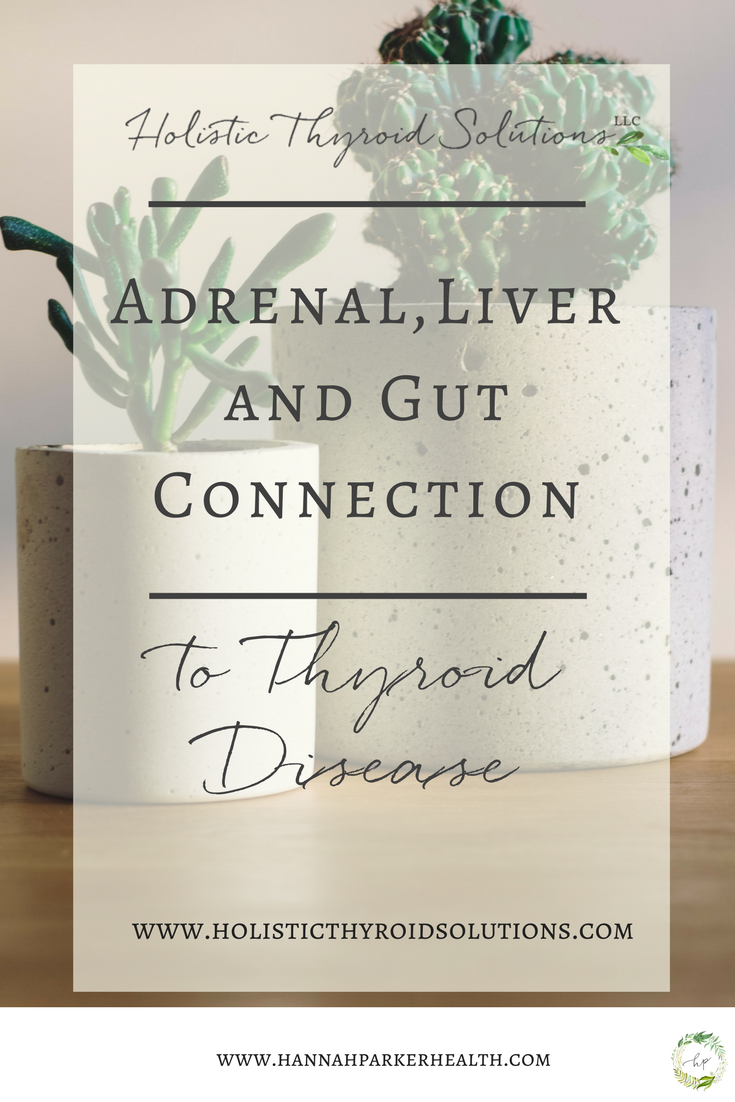 Adrenal, Liver, and Gut Connection to Thyroid Disease