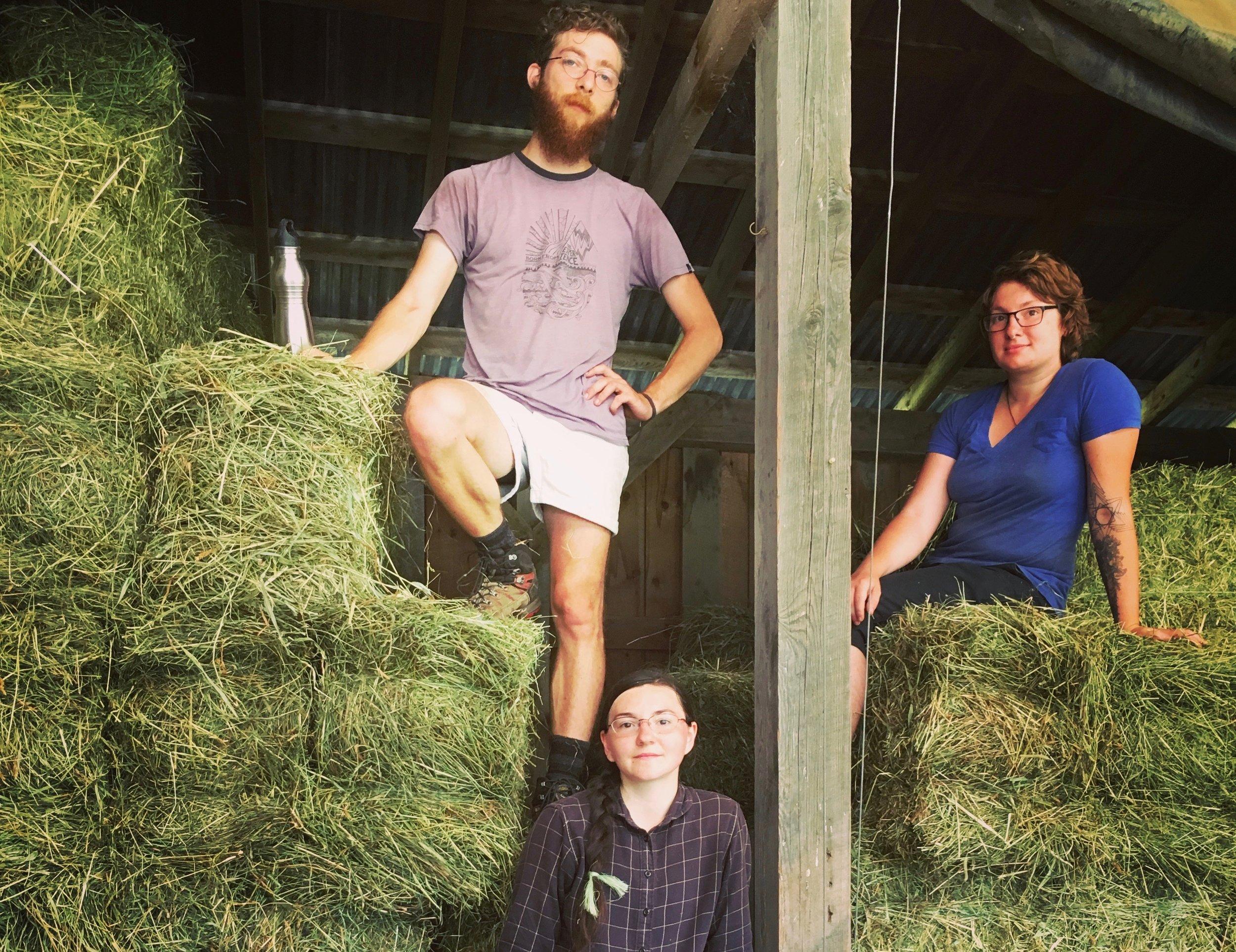 interns on hay loft.JPG
