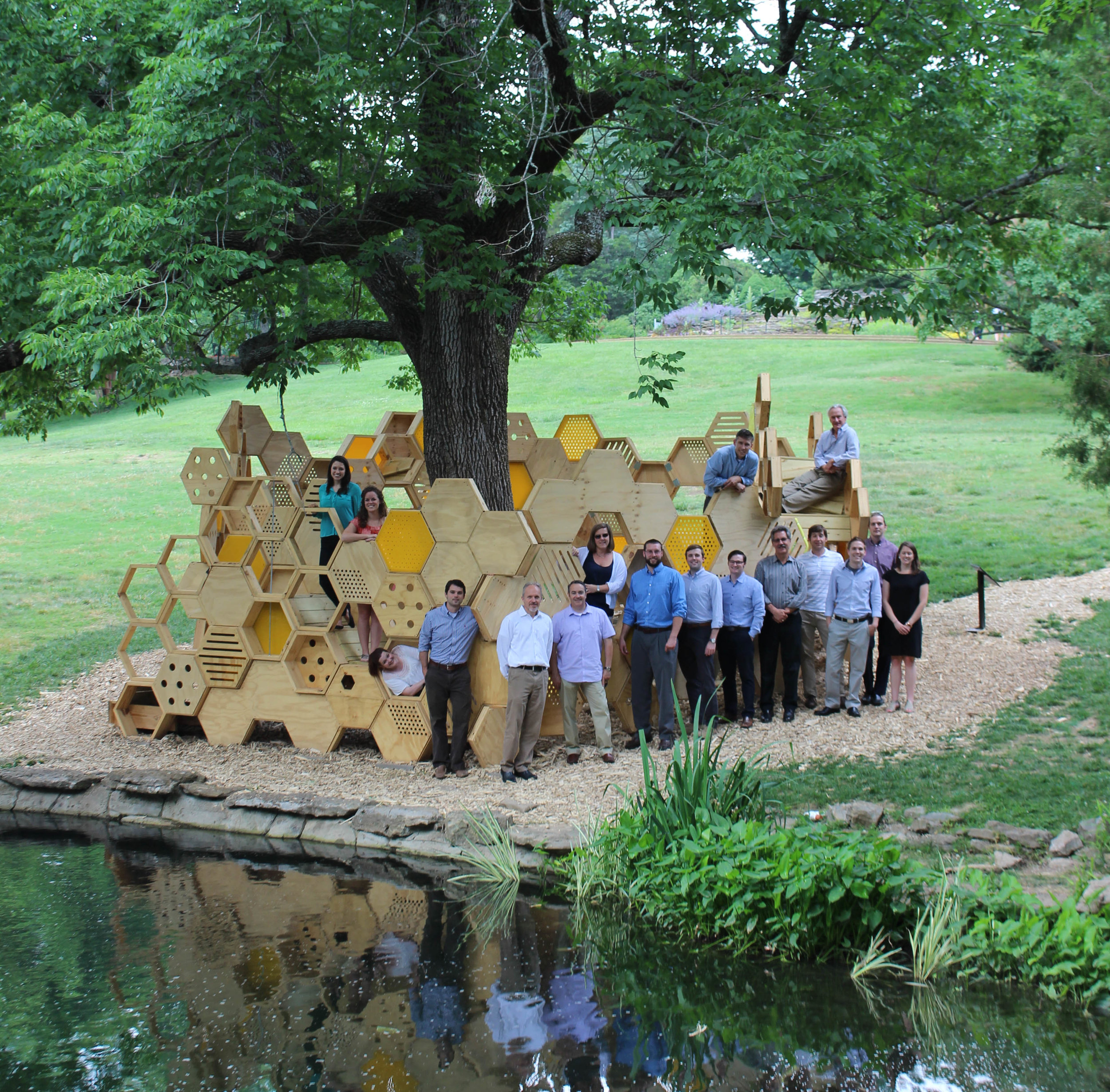 Firm Photo_Hive_28May2014.jpg
