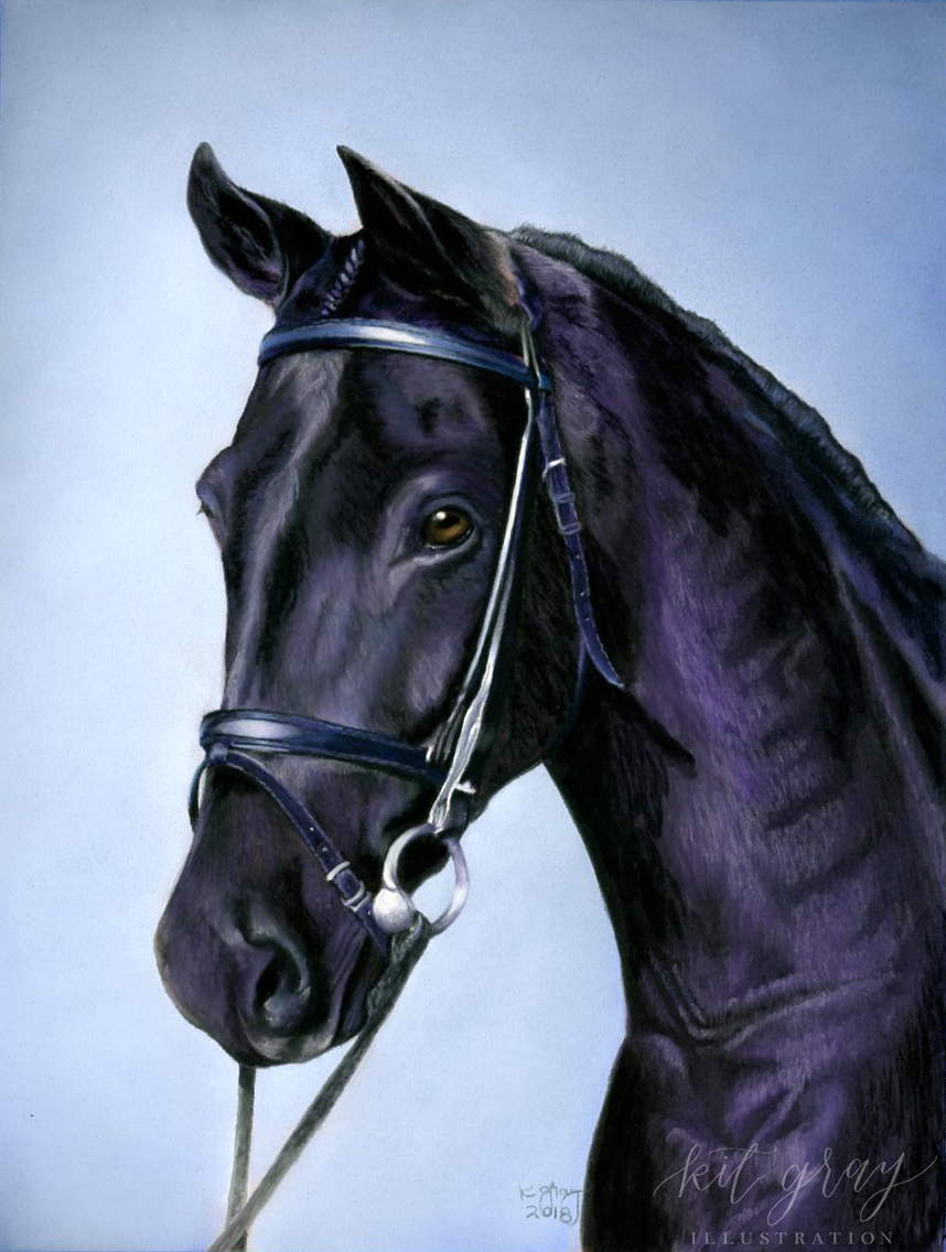 "Windsor - Horse in Pastel, 9"" x 12"""