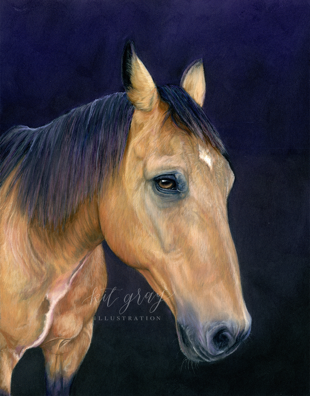 "Bullwinkle - Quarter Horse in Pastel, 11"" x 14"""