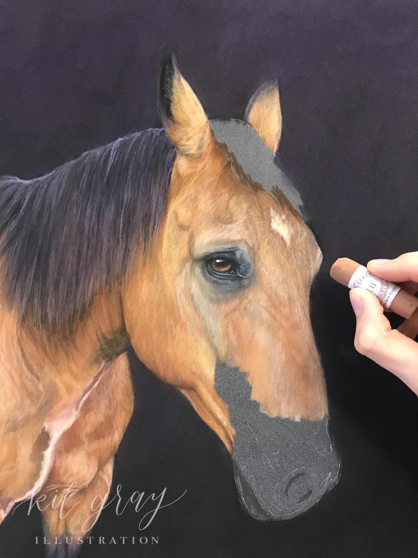 "Progress photo of ""Bullwinkle"" (quarter horse) in Unison Colour soft pastels"