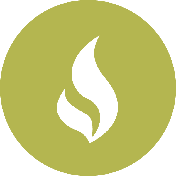 Natural Gas Icon.png