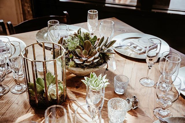 Love grows here⠀😍🌱✨ ⠀ #hooraykarahitay #succulents #succulentwedding #succulentlove #luxurywedding #wedding #weddingday #weddingreception #weddingseason #theysaidido #weddingideas #dreamwedding #instawedding #weddinginspration #weddinginspo #smogshoppe #realweddings #tablescape #tabledecor #weddingcenterpiece #weddingvenue #lawedding #weddingreceptiondecor #eventdesign #allthedetails #weddinglove #weddingphotos #weddingphotography ⠀ #weddingplanner #meleamore