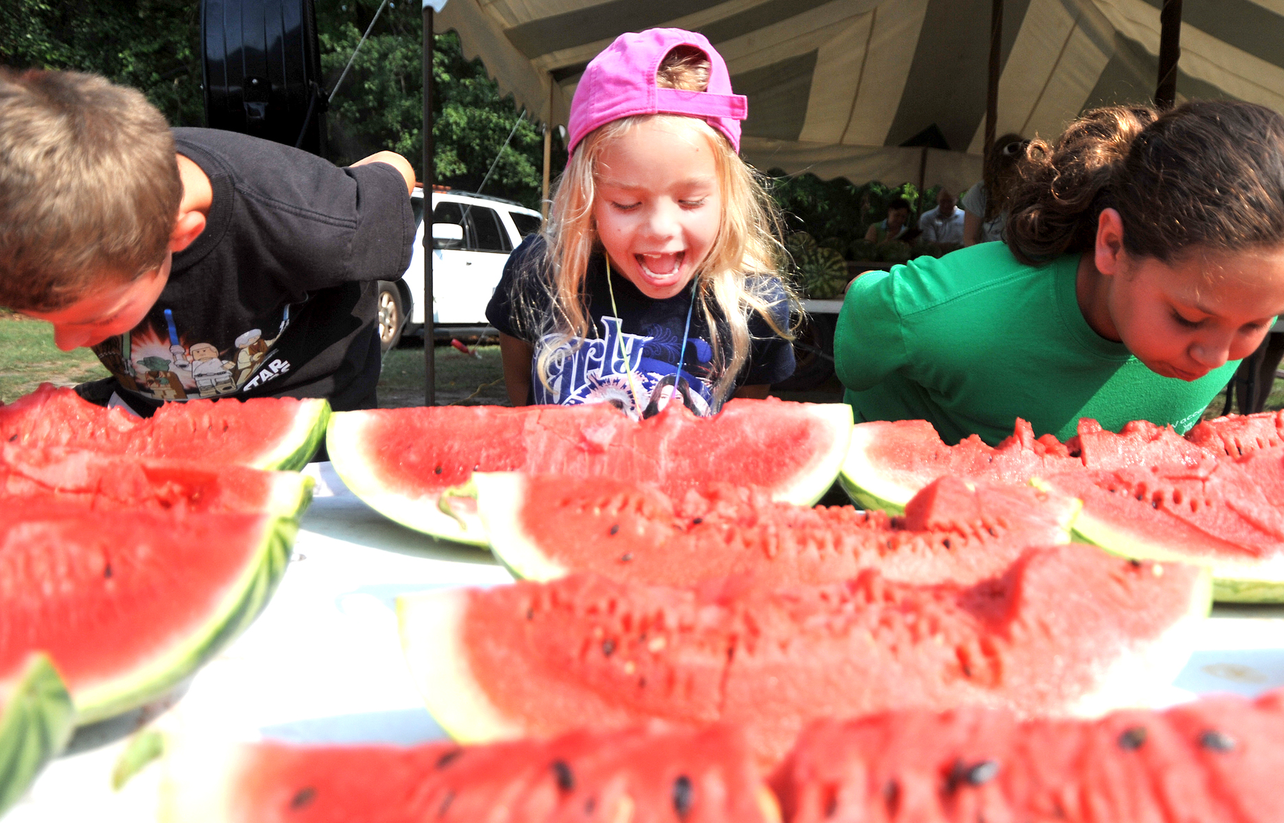 Watermelon Fest 11 best.jpg