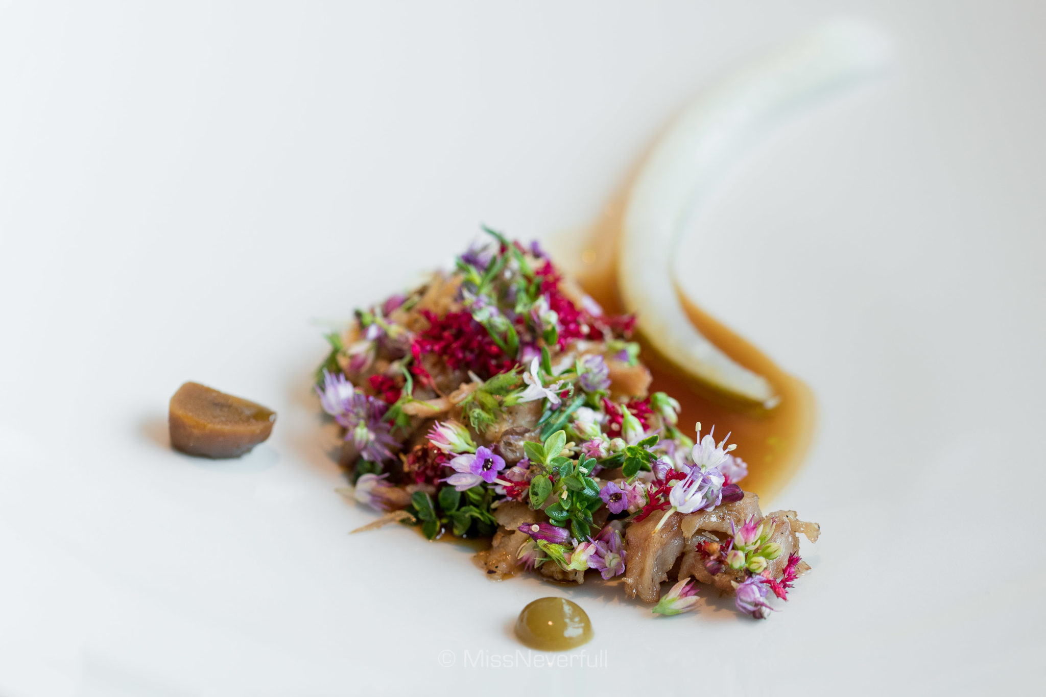 2.7 Grilled pork on the 'bone', black currant and pine