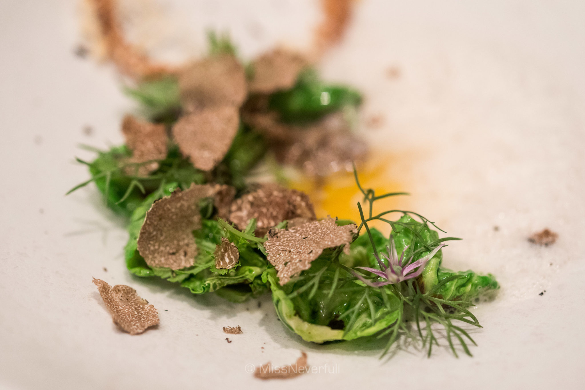 * Poached egg yolk, cabbage, comte, black truffle