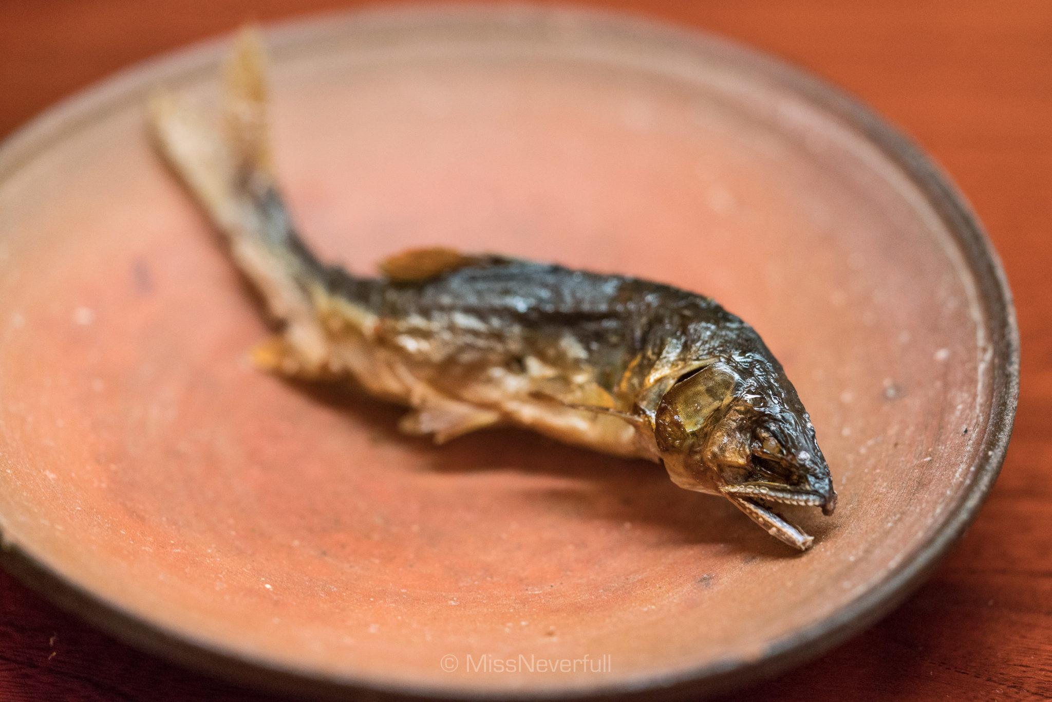 7. Grilled Ayu fish from Ado-gawa lake (滋賀県安曇川と針畑川の鮎焼き)