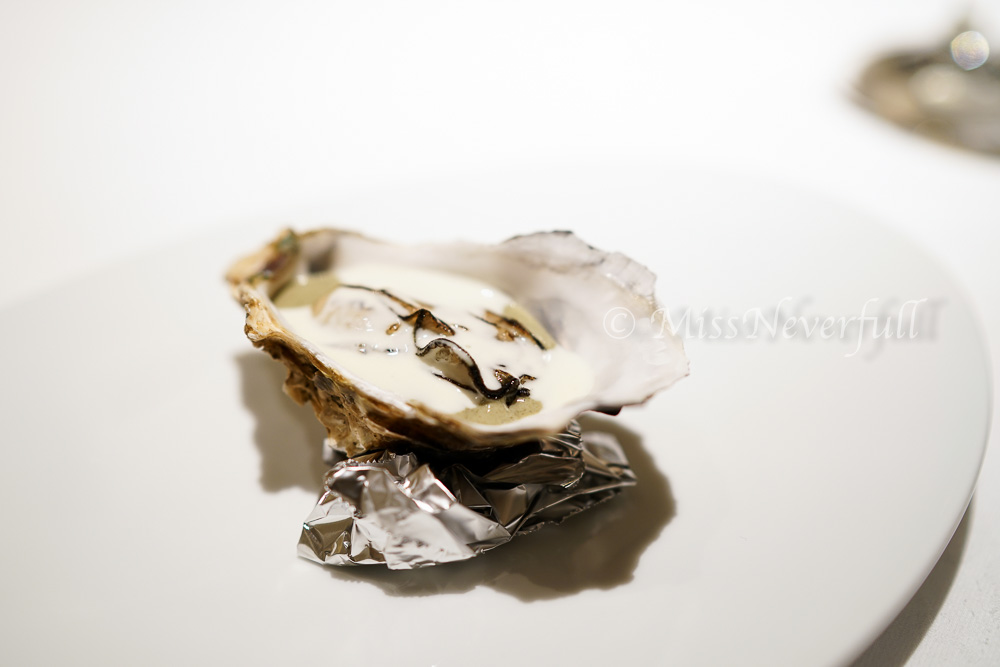 Fresh oyster from Kyushu (九州)