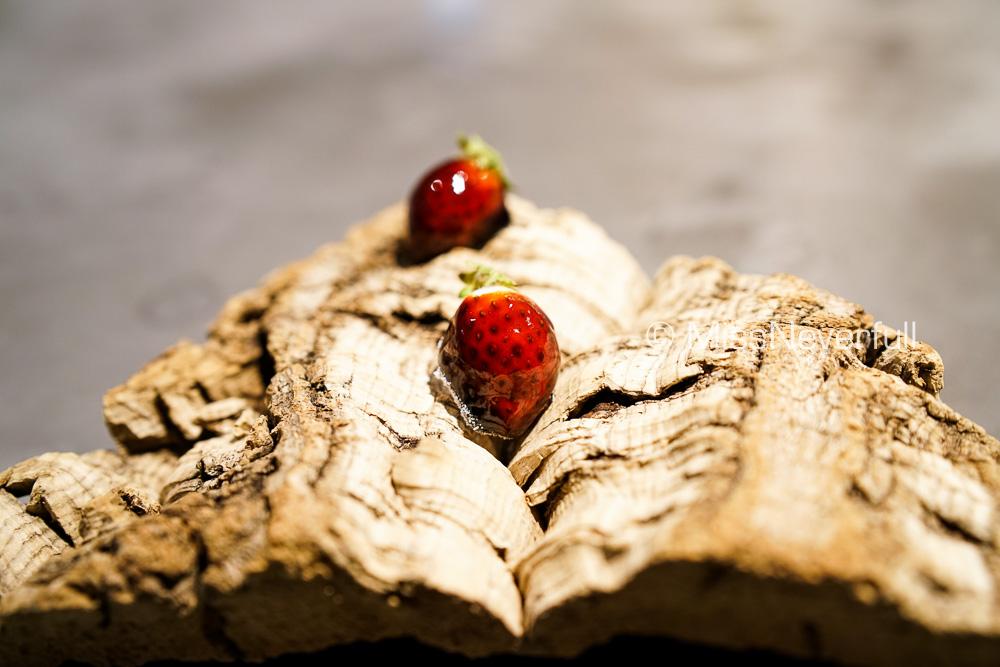 Tea snack: Candied wild strawberry