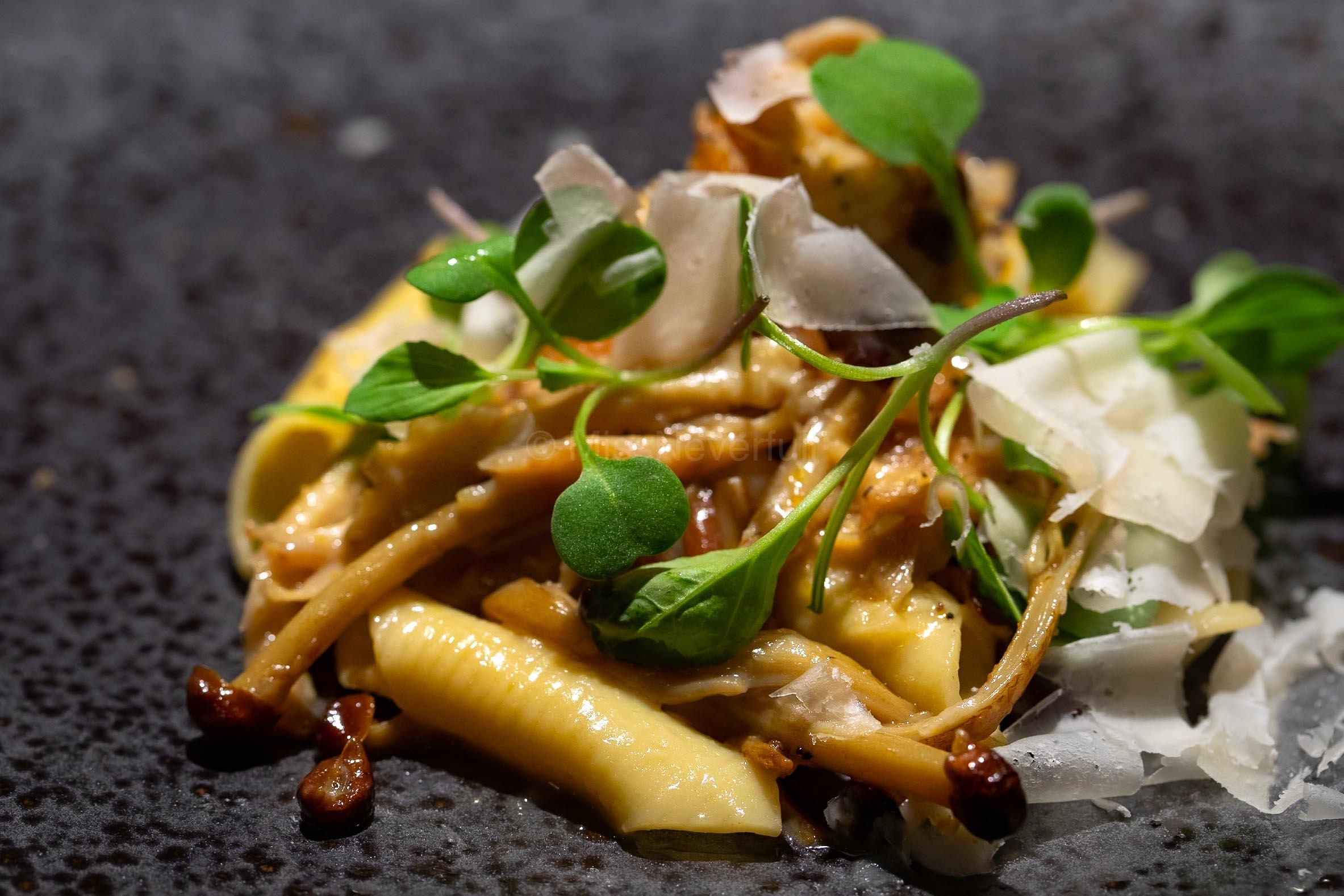 5. Penne Ragu with Assorted Mushrooms