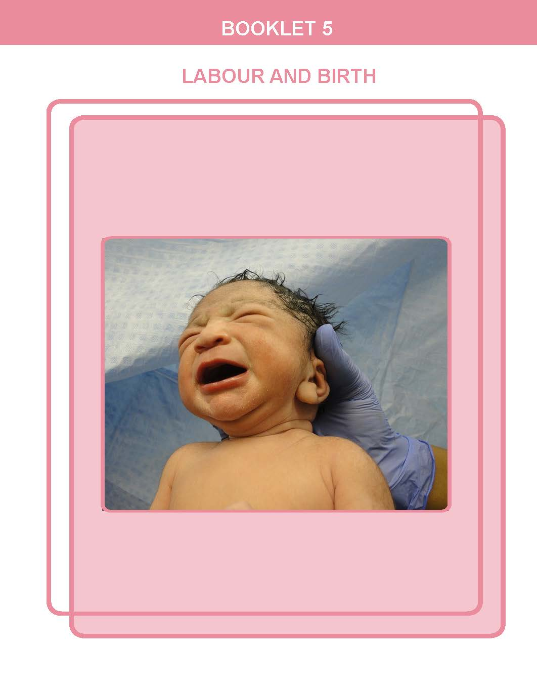 You probably have questions about giving birth. You can read about  labour and birth  in Booklet 5.