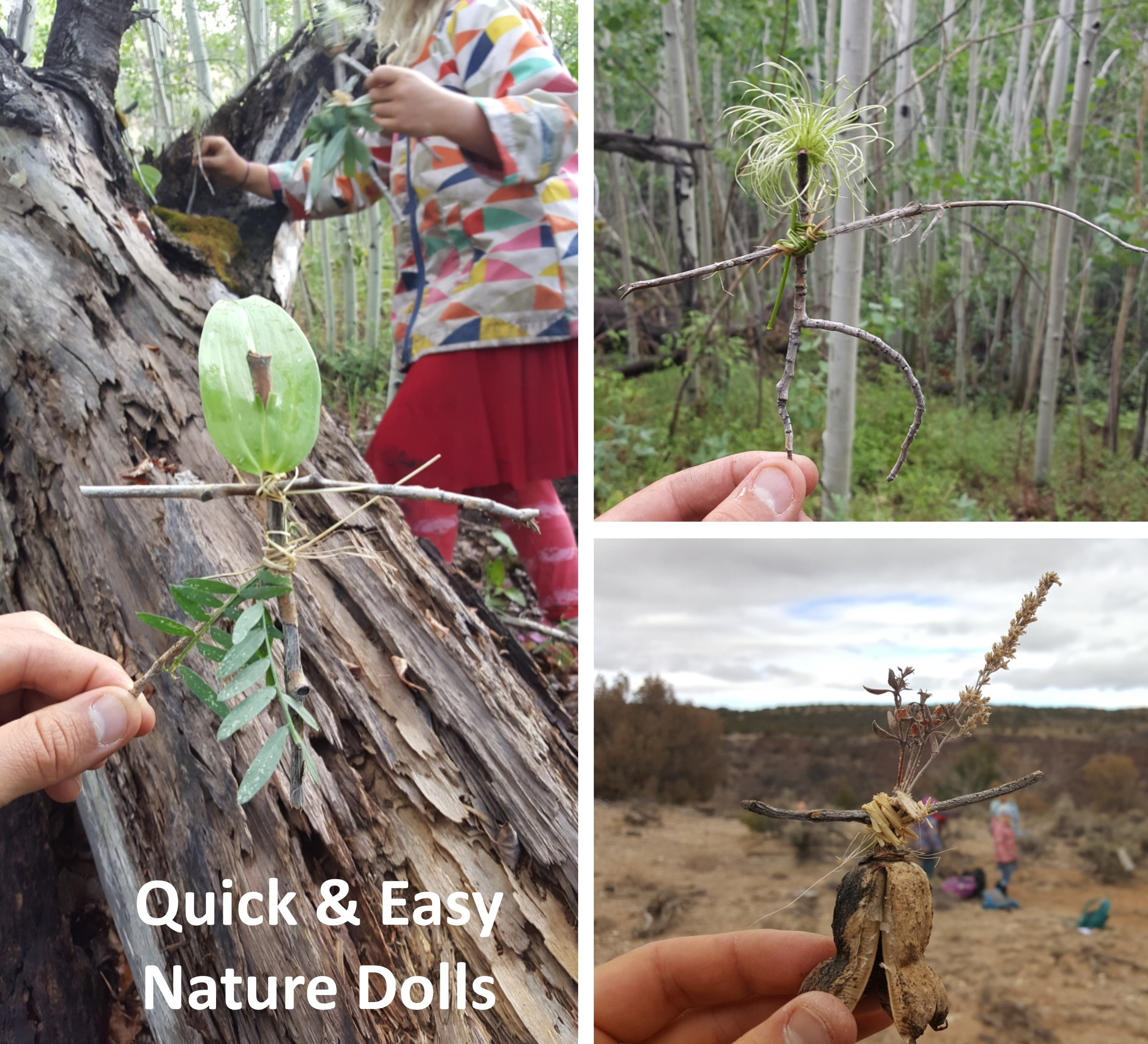 Quick & Easy Nature Dolls.jpg