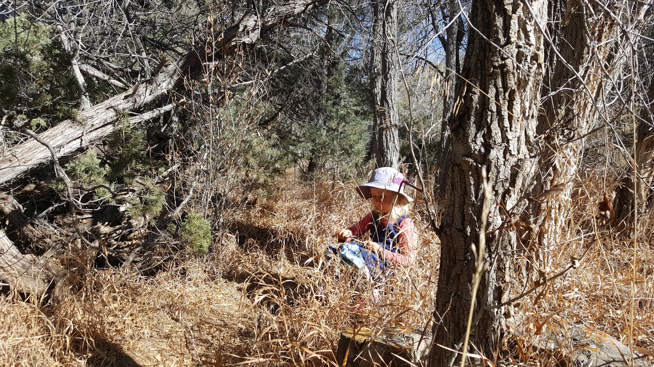 One of the things that makes outdoor education so rich is that it provides opportunities for the children to socialize, learn games and crafts, and sit quietly by oneself - all in the stretch of a day. There's so much room in Mother Nature.