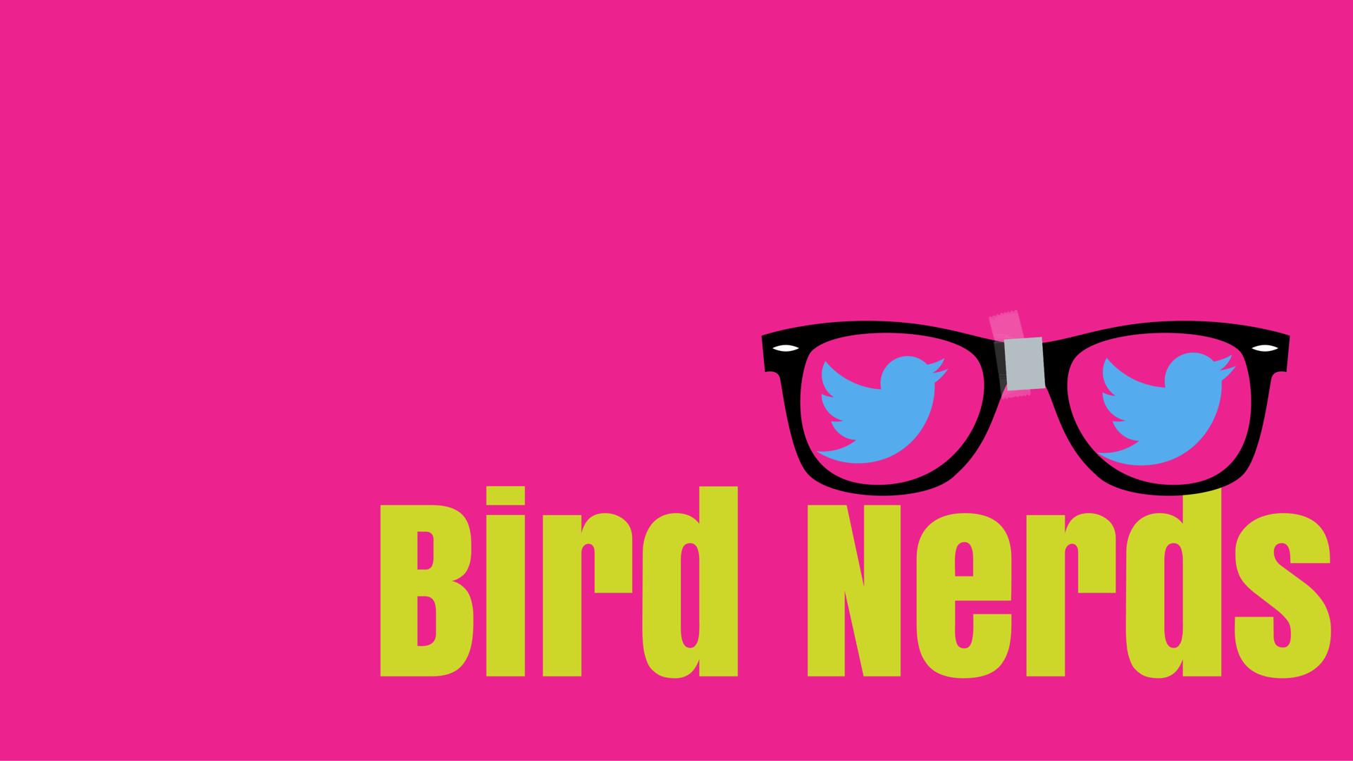 bird nerds logo.png