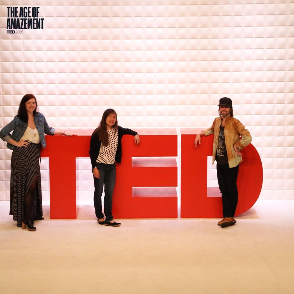 TED-TLDNEsq.jpg.jpg