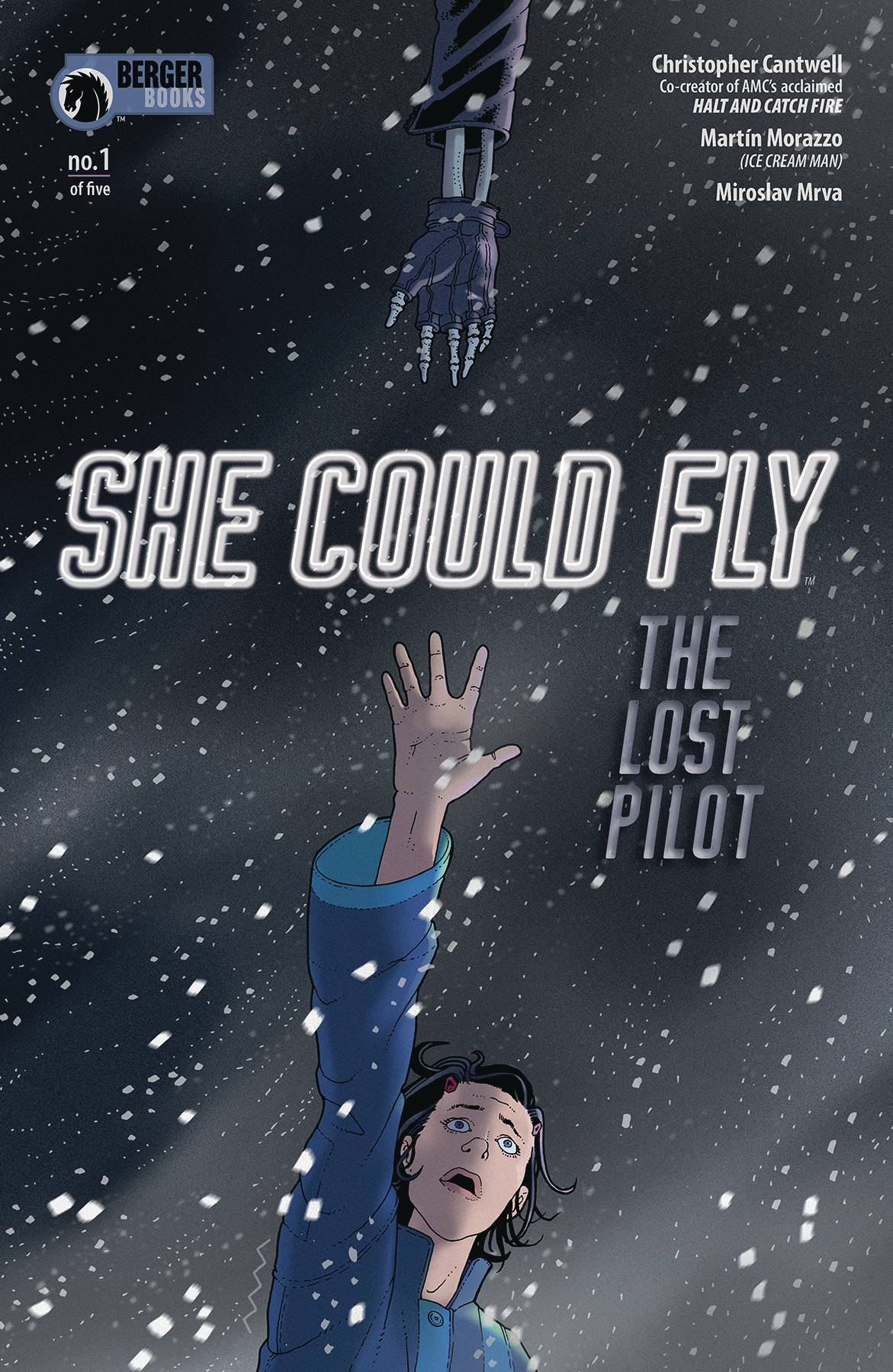 SHE COULD FLY LOST PILOT 1 of 5.jpg
