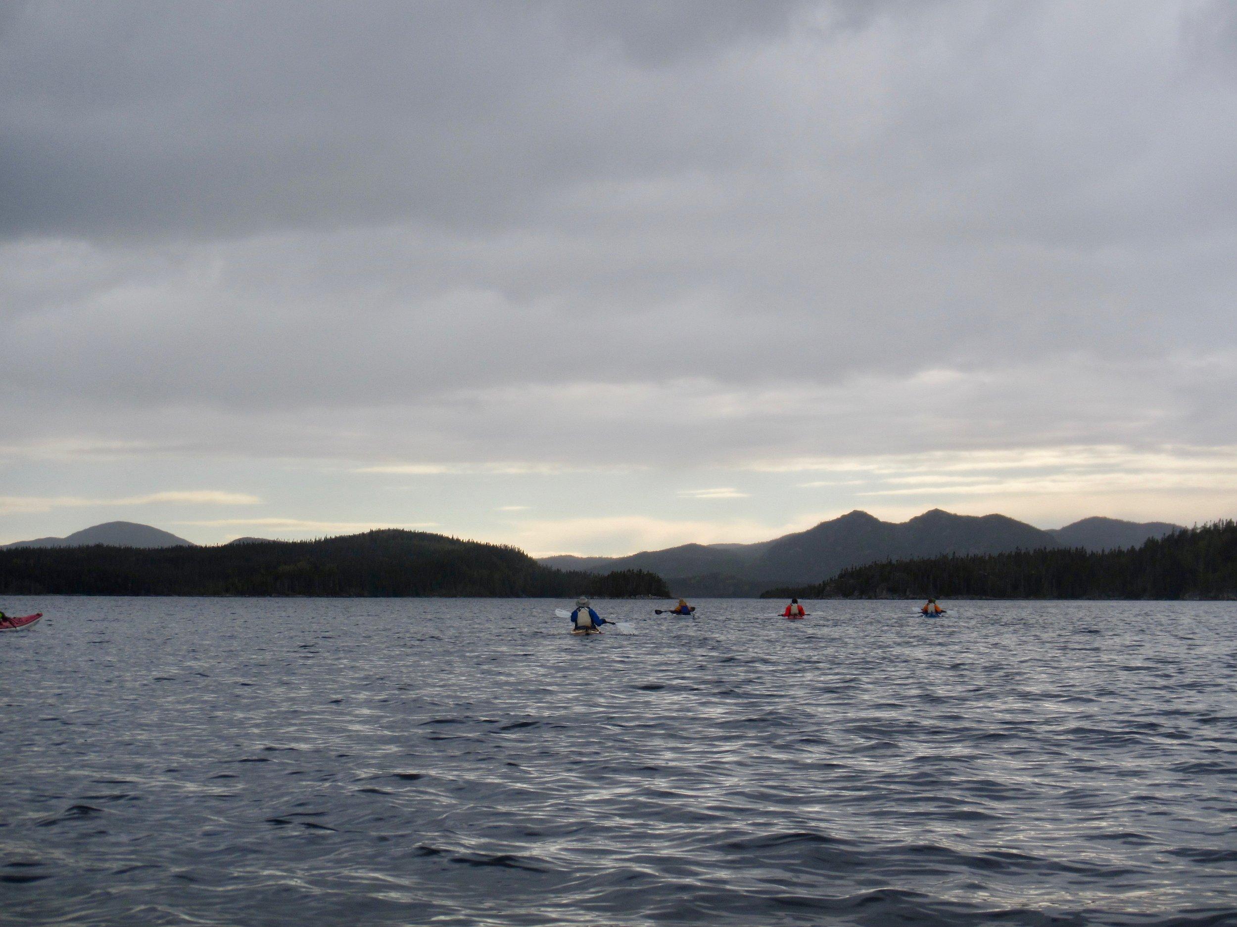 Kayaking Newfoundland