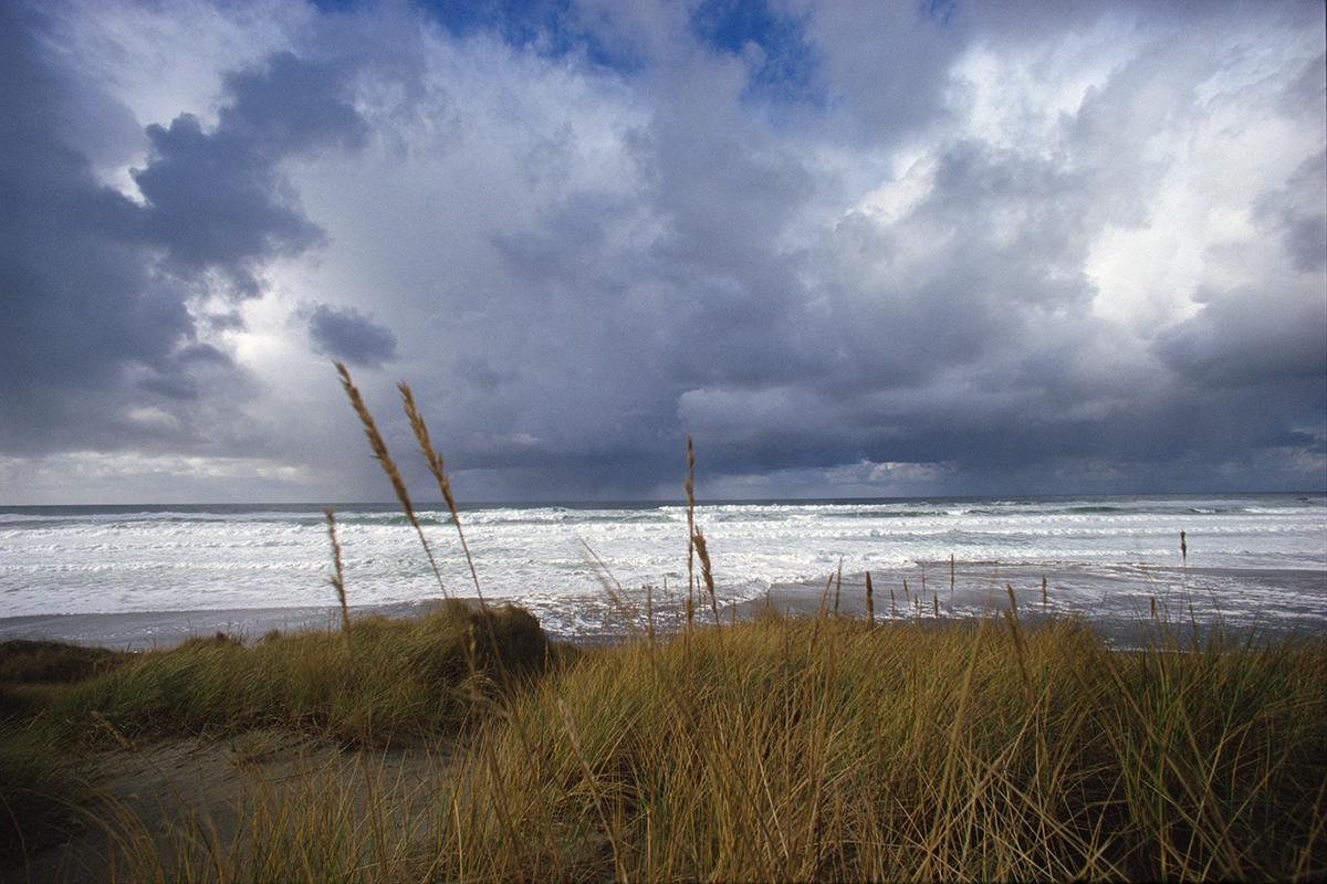 EOT_COAST_Grass-and-storm-clouds-oregon-coast.jpg
