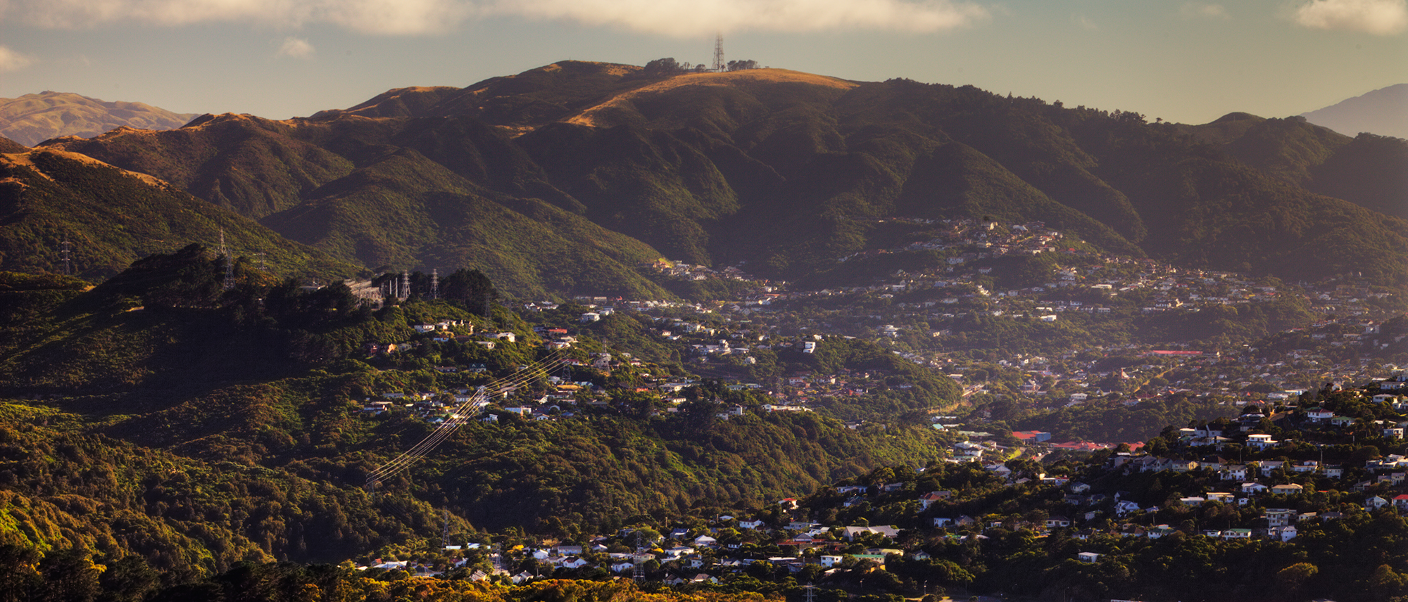 Wellington from Wright Hill, NZ