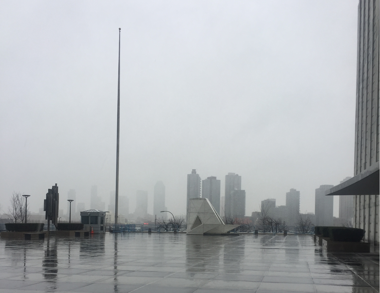 It was a cold, rainy day outside the UN headquarters in NYC on March 2nd, the day of the UN World Wildlife Day event.
