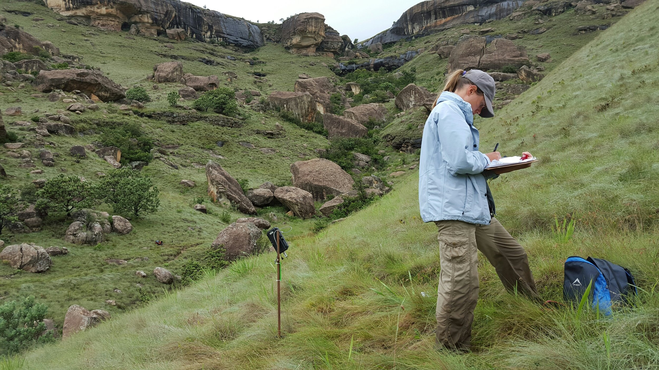 Checking camera trap data in the Drakensburg Mountain range, South Africa. This was the first camera trap Leopard Survey of its kind carried out in the Drakensburg.