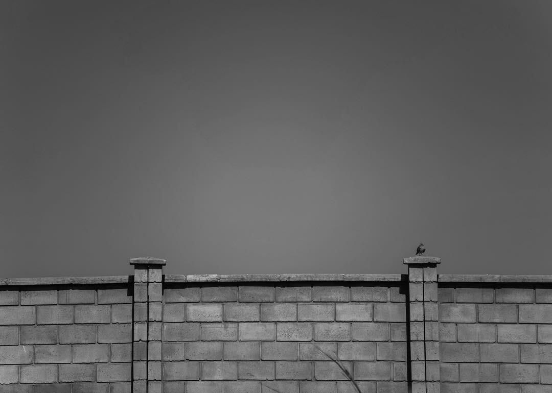 Dourados (MS), Jul/2018. © Lucas Landau