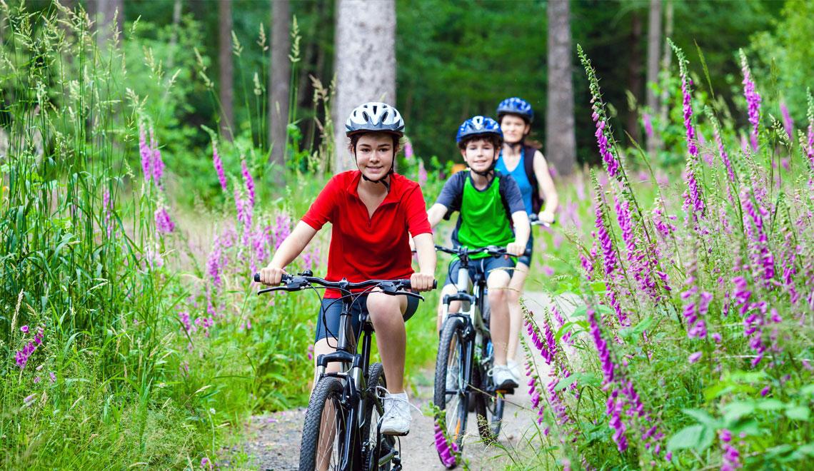 Go on bike ride